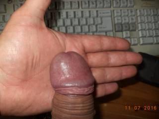 my dick. it is wide. my hand is 10 cm wide