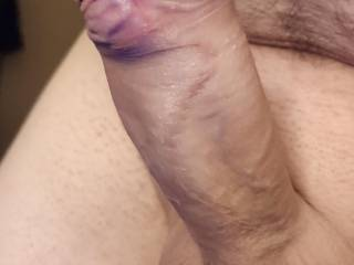 horny shaved dick before fun
