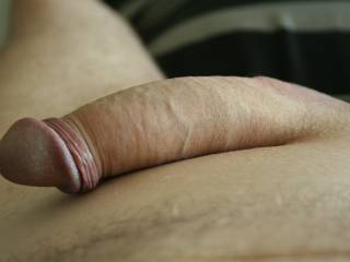 Jen took this picture of my cock, she always loved the fact that I am uncut. Do you like shaved cock?