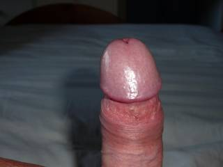 mmmmm that is a very nice cock - looks very lickable and suckable mmmmm