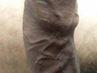 My thick veiny cock for you to play with..