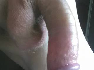 Was playing with my cock and decided to take a pic to show off...are there any women men or couples in my area willing to invite me over ?