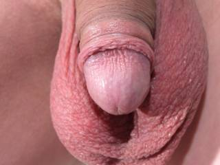 Fantastic cock with foreskin nicely pulled back!