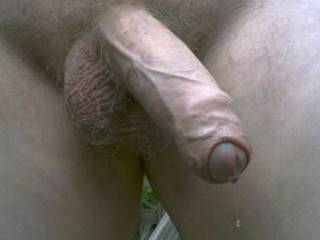 What a magnificent cock with a perfect foreskin!