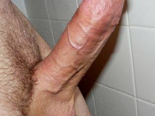 nice veiny meat for the ladies to suck, chew and fuck. Better if shaved smooth