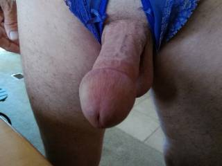 Mmmm, that cock looks horny to me....can I suck it?  Wearing crotch less panties....nice.  MILF K