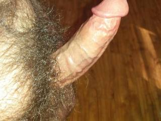 Who wants to play with my hard cock?