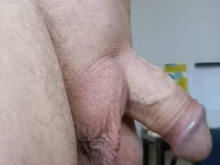 Recording my bald cock and balls.