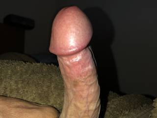 One hard cock...ready to serve!!