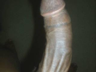 absolutely beautiful dick !!! greetz, from germany, Haki :-)