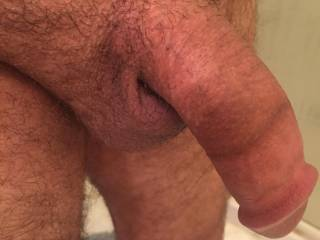 Barely rising. Who wants to help it get fully erect?