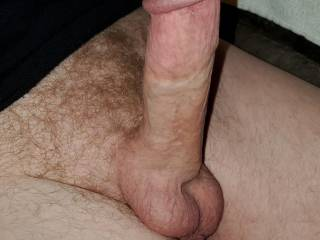 Cut white Hard thick penis dick cock balls