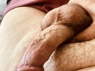 My cock getting ready to fuck,