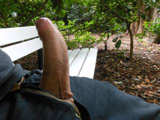 Risky jerk at public park bench - nearly got caught!