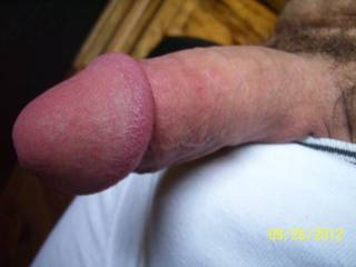 Hot cock! I'd like to hang out with you.