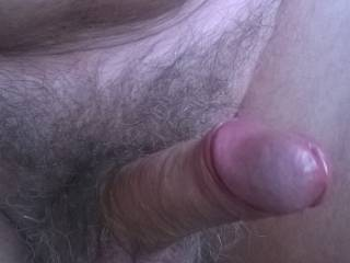 my unshaved dick