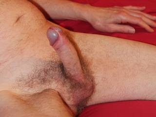 How about some fun with a stiff dick and some tight balls?