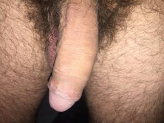 My warm dick