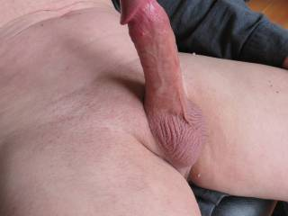 What a perfect sight!  Wonderful erect, fully shaved cock & balls.  Delicious!
