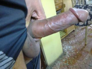 Dude, do you have any idea how hot your cock is?  I would give you head whenever!