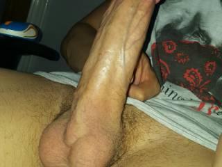 Suck my hard dick