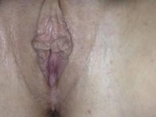 My wife's big meaty pussy