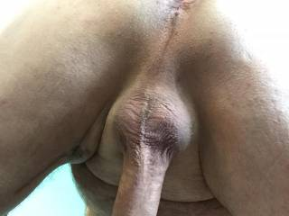 Any ladies out there that enjoy sucking ass, balls and cock?