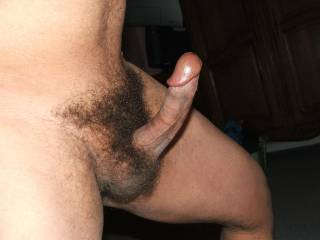Classic looking cock. That would fit in my cunt, ass and mouth.