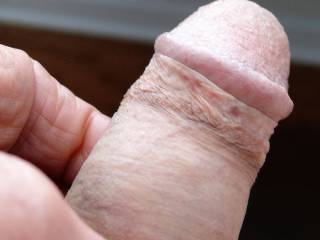 Cut cock with lots of foreskin