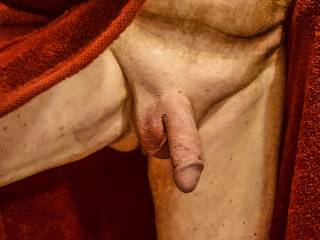 Drying off, cock still swollen from jerking off in the shower.