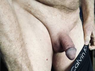 Taking a photo for a friend who wanted to see my cock right now.