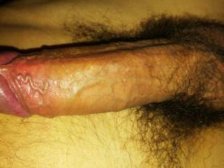 hairy big dick cock