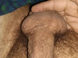 My limp.cock he is hungry