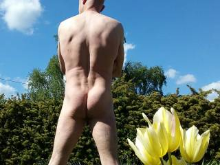 Sunning with the tulips am I just a Bum?