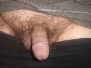 I'd like to suck your hairy little cock