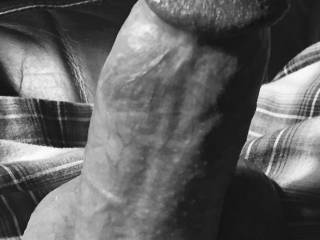 Just been a while since I posted a cock only pic......