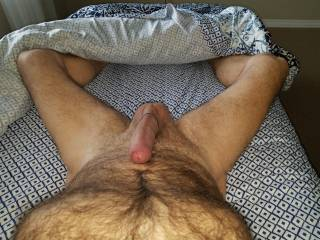 laying here hard n horny wishing you were here to take care of this for me.