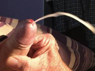 I got Very horny last night chatting with a Zoig friend a d this happens