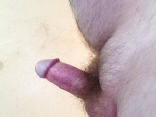 Just me hard again chatting with a hot older member. Love to chat feel free to message