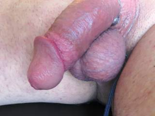 shaved smooth, tied up balls, and ring on cock