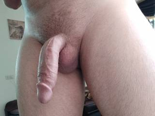 my erected curved dick.your opinion?