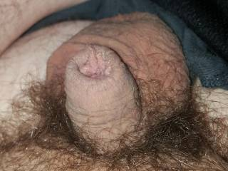 Pic of my small soft dick
