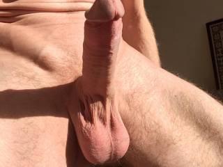 my dick in sun