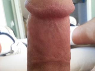 Excellent cock i'd love you to slide it between my tits..