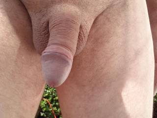 I'd like to put some lotion on you, right after I suck that cock hard.....It looks so delicious.