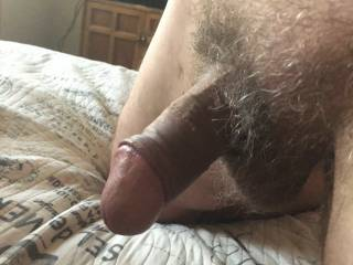 My cock soft. You should see it hard