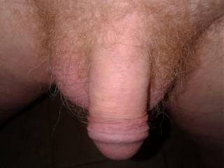 I was board and thought my fellow members would like to see a small ginger dick. Hope it\'s good enough to share.