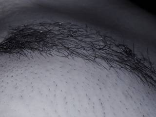 trimmed pussy