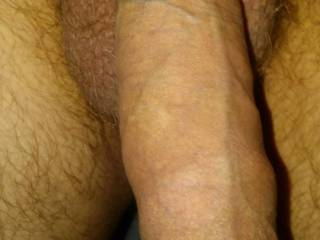 Thick. Who wants to trace every vein with their tongue?