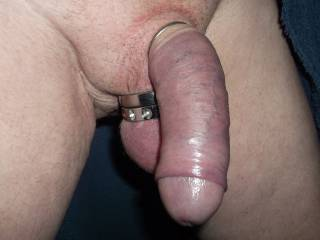 Mmmmm, you have  delicious looking cock....I'd love to slip all of that cock into my mouth and suck you off.  I love having a nice thick cock to swallow. Love that cock picture.  MILF K